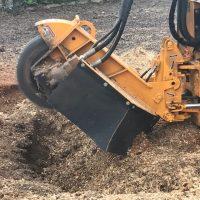 Arboriginal Tree Services – 17