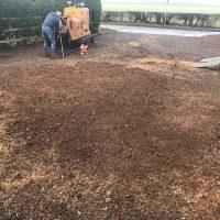 Arboriginal Tree Services – 20