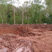Arboriginal Tree Services Landscaping – 36 (1)