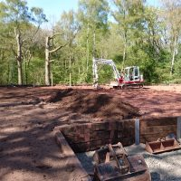 Arboriginal Tree Services Landscaping – 56 (1)